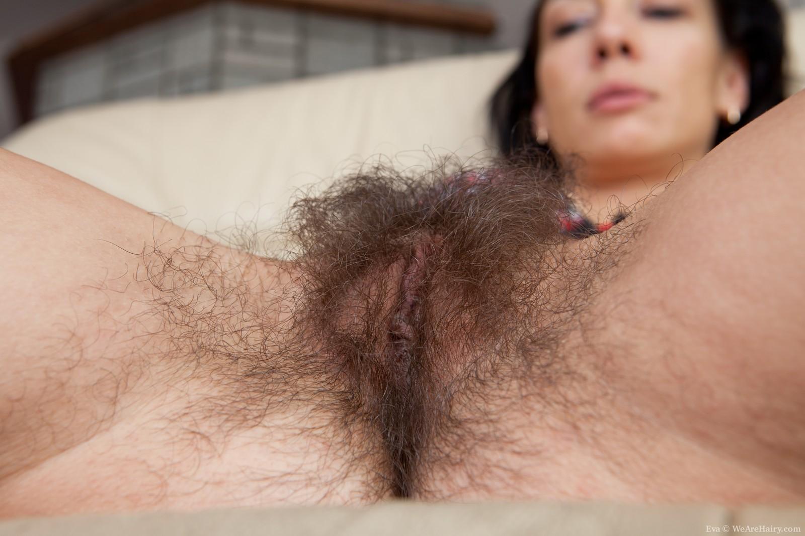 Hairy female pubic hair
